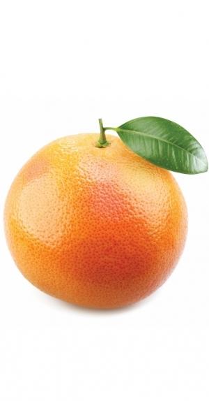 Эфирное масло грейпфрута | Citrus X paradisi doTERRA ESSENTIAL OIL - 15 мл.